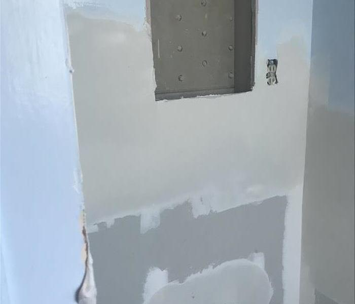 Removal for Mold Damage