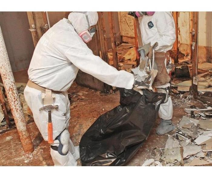 Mold Remediation Dealing With Mold Presence in Your Brea Home