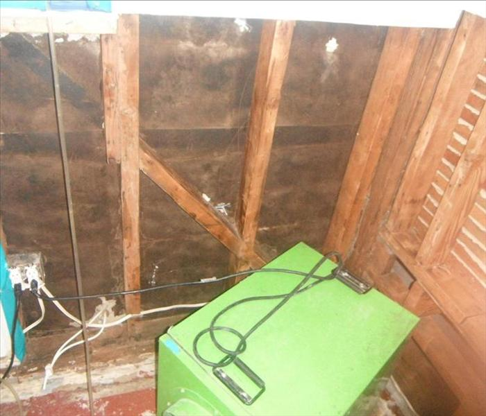 Mold Remediation Mold Removal in a Brea, CA Home