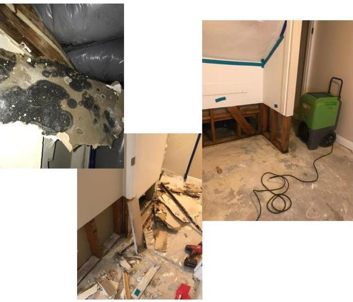 Left shows mold, middle demolition, and the right shows the drier