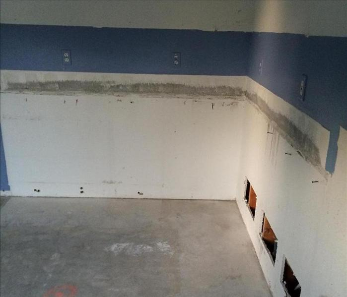 Mold Remediation Mold Removal After a Leak in a Yorba Linda, CA Home