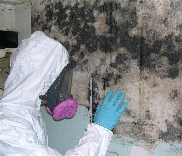 Mold Remediation Unsightly, Stinky and a Potential Health Hazard.  Protect Your Tenants and Employees From Mold.