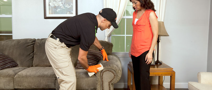 Yorba Linda, CA carpet upholstery cleaning